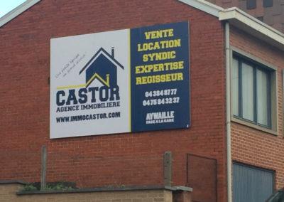 Panneaux publicitaire pour l'agence Castor Immo